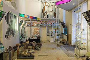 карта гостя музей геологии